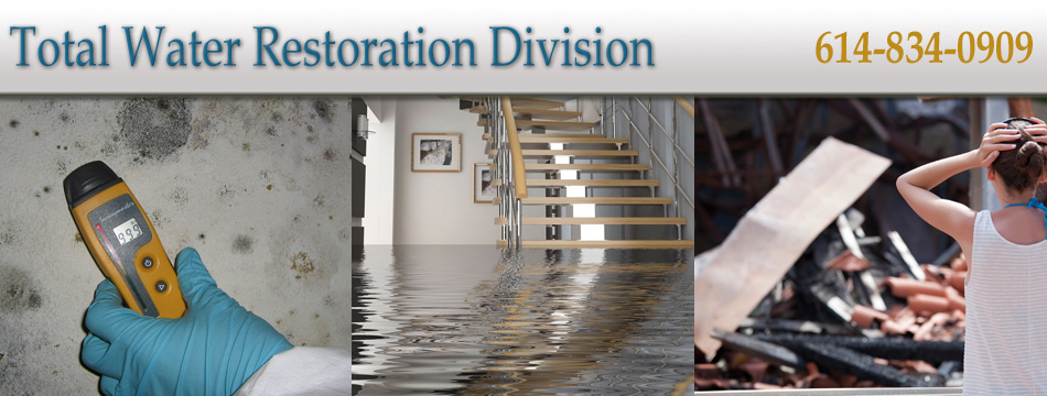Total-Water-Restoration-Division-New-Banner.jpg