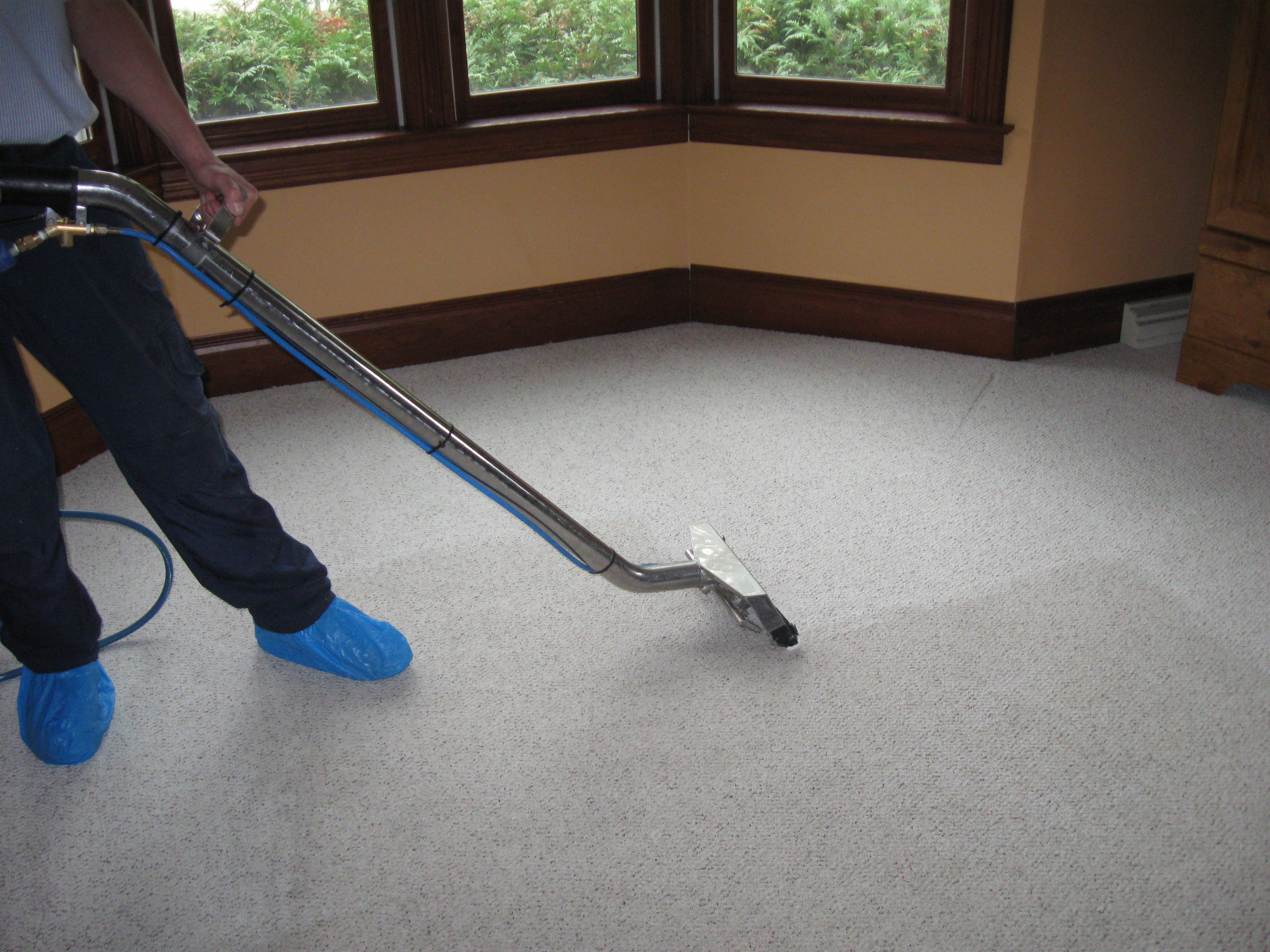 Residential Carpet Cleaning Queens NY