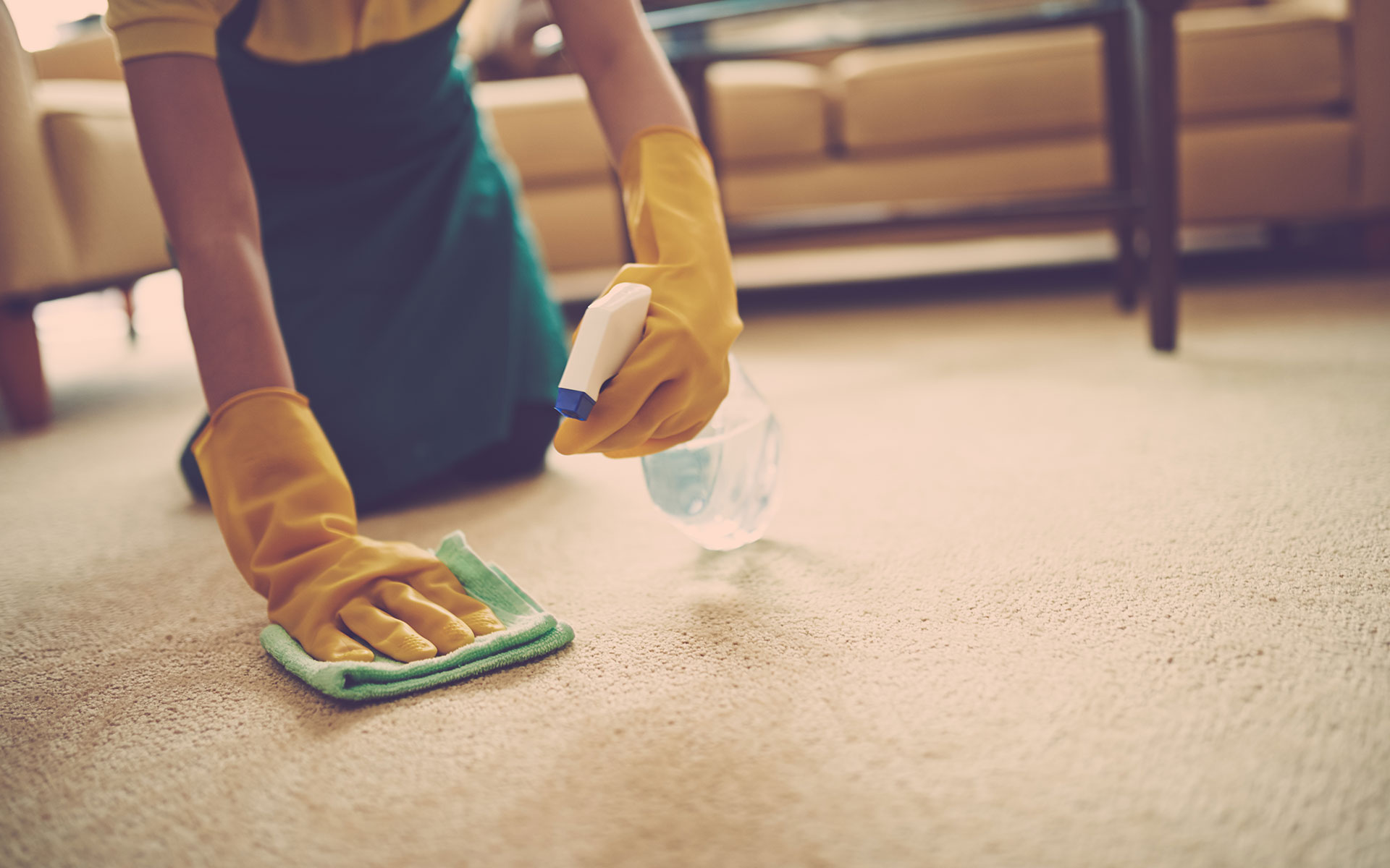 Carpet Cleaning Deals Mid City Los Angeles CA