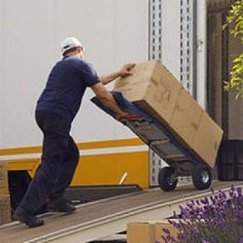 Moving Labor Washignton DC