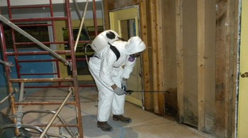 Mold Removal Company Gresham OR