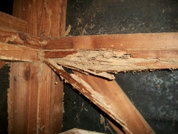 Pre Drywall Inspection New Brunswick NJ