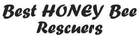 Best Honey Bee Rescuers, Honey Bee & Hive Removal Kingwood TX