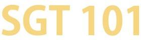 SGT101 | Airport Sedan Service Daytona Beach FL - Airport Transportation Service Daytona Beach FL - Limo For Air Port Daytona Beach FL