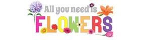 Best Flowers Service   Wholesale Flowers Fob Miami FL   Wholesale Roses B2B Miami FL   Wholesale Florist Company Miami FL